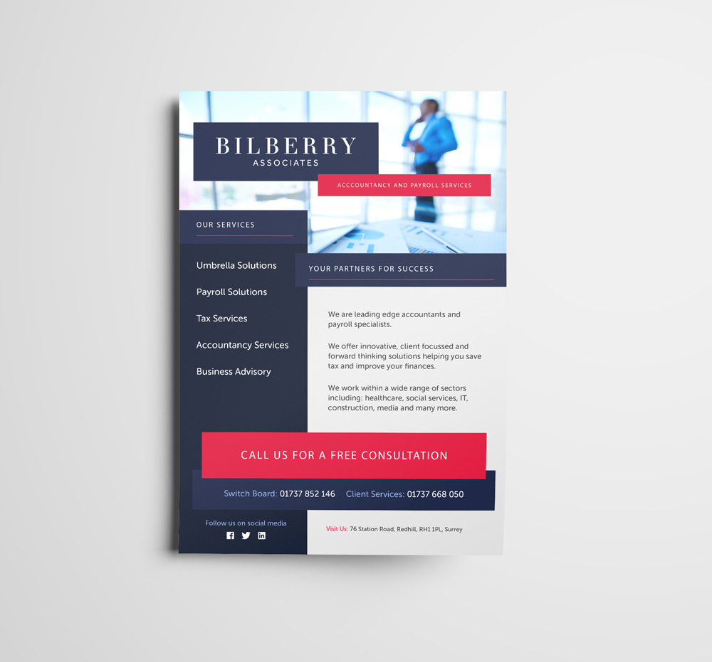 Bilberry Flyer Branding Design